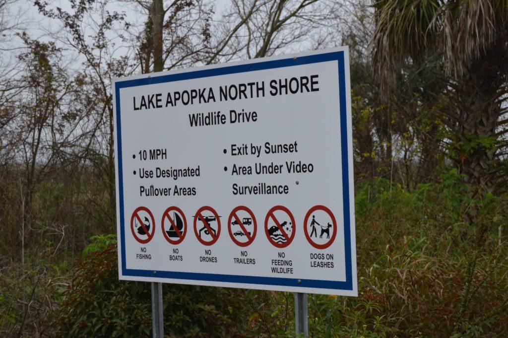 Lake Apopka Wildlife Drive Florida