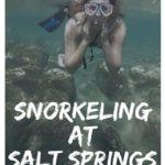 Snorkeling at Salt Springs
