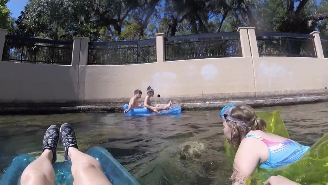 snorkeling kids in Salt Springs swimming area on pool floats