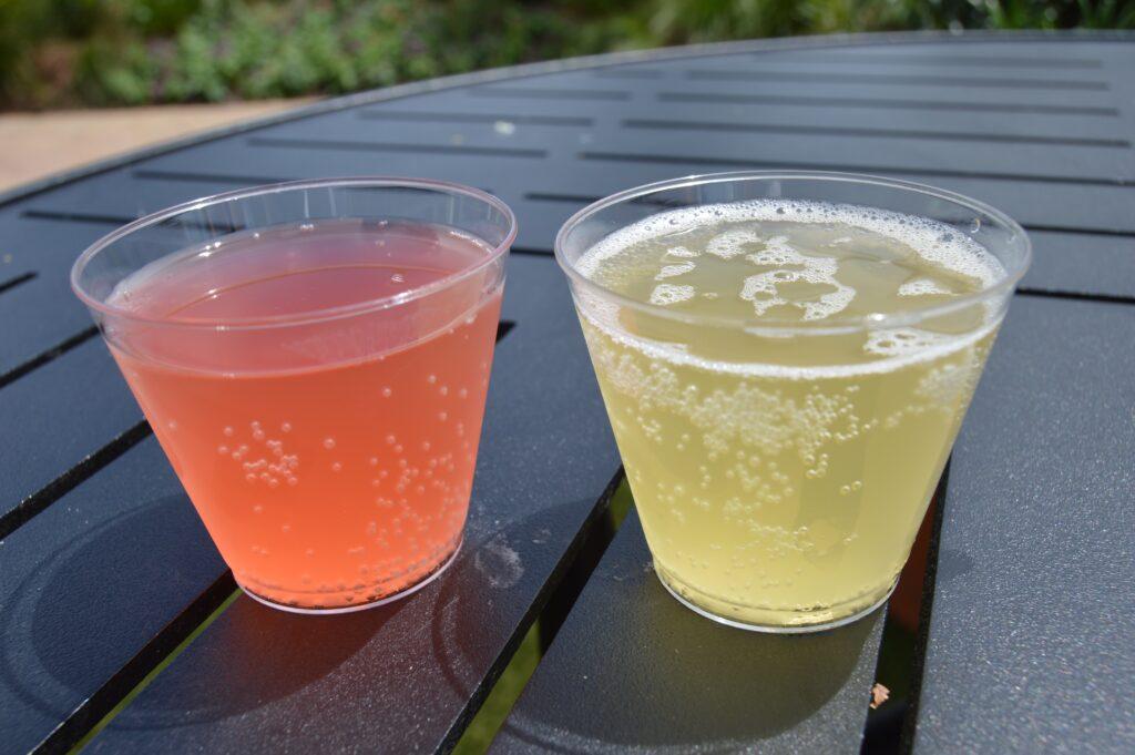 two glasses of kombucha