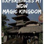 Magic Kingdom Original Attractions Pinterest image