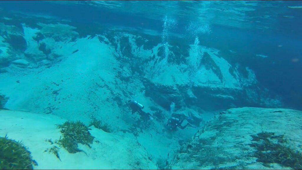 scuba divers underwater at Alexander Springs