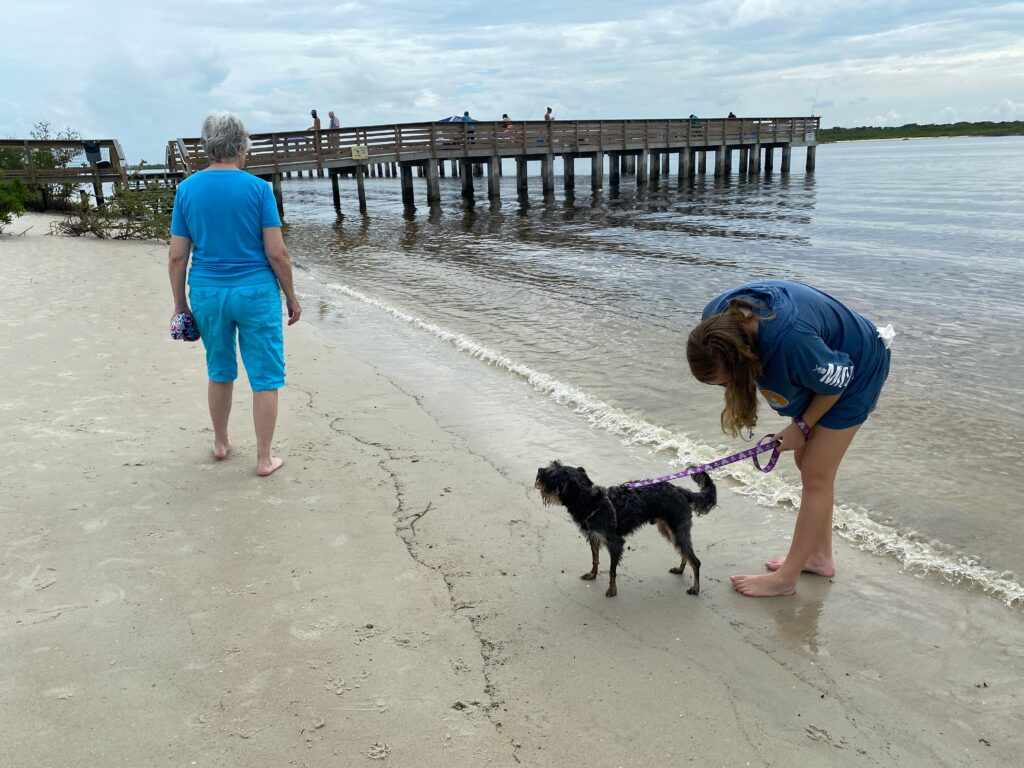 girl and dog on beach in New Smyrna