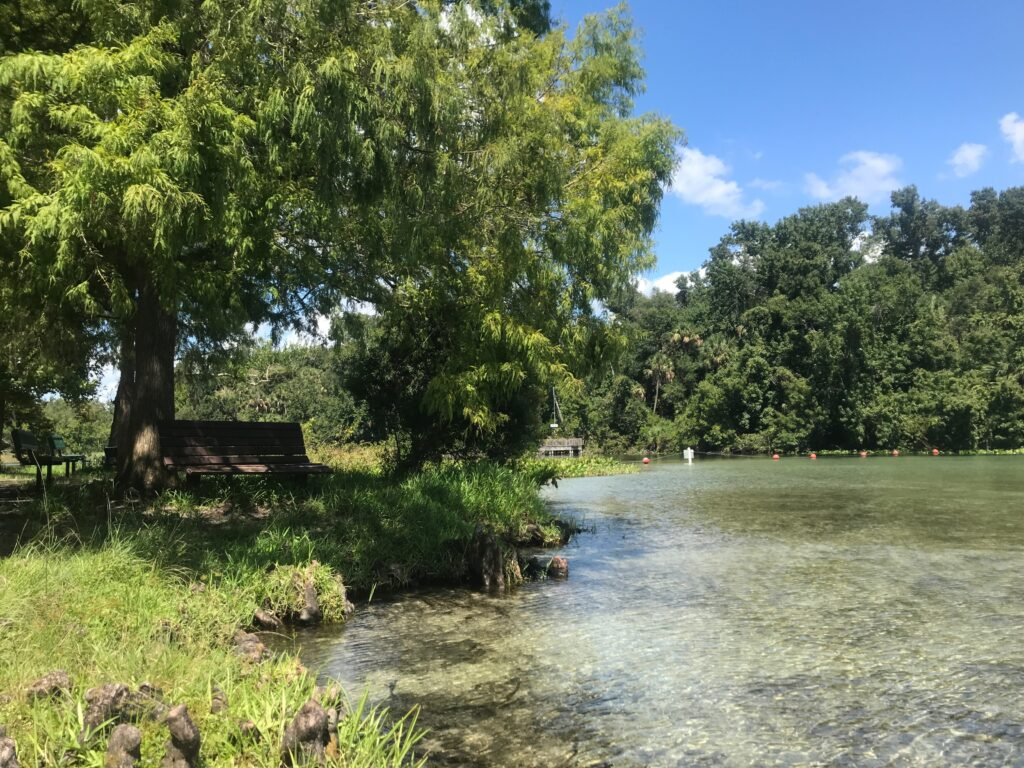 Shallow end of Alexander Springs