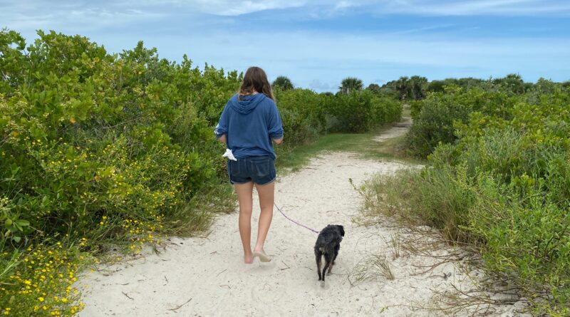 Girl walking dog on sandy trail