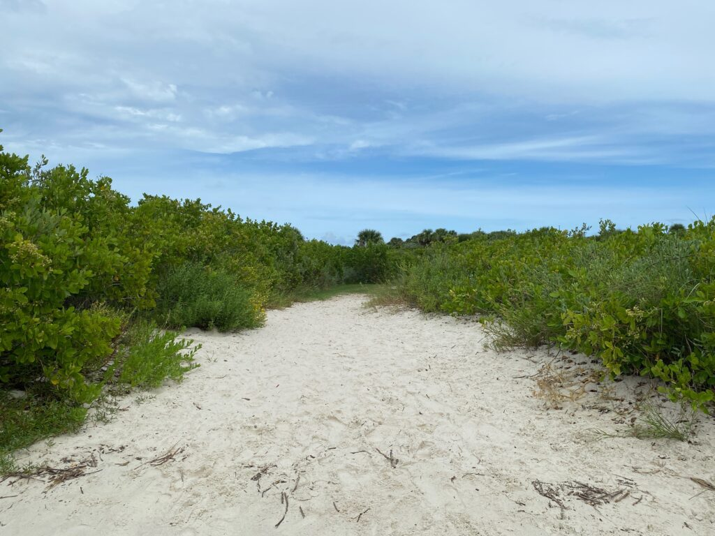 Sandy trail to dog beach in New Smyrna