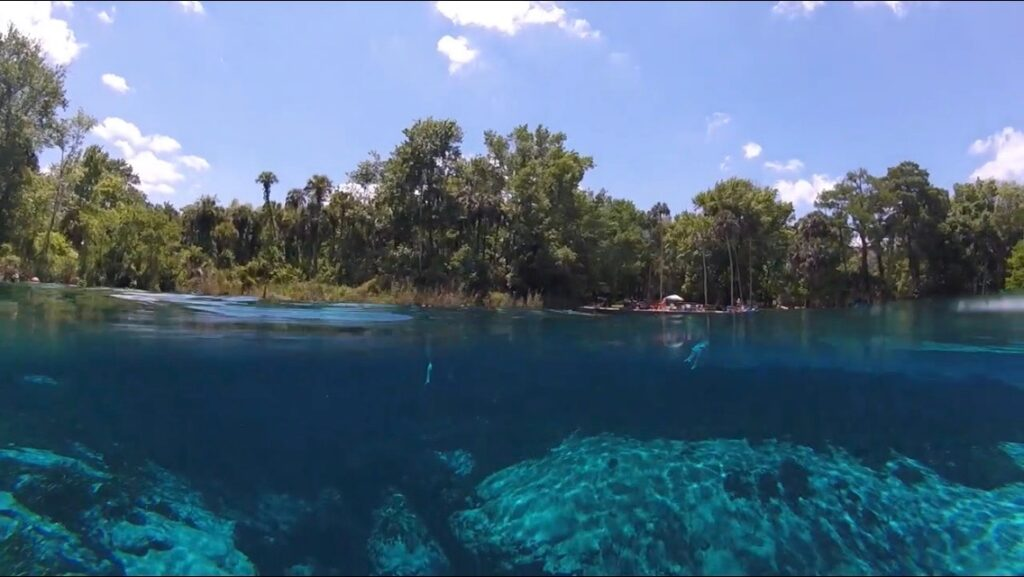 Above water view of beach, and underwater view of springs