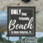 Pinterest image for New Smyrna Dog Beach