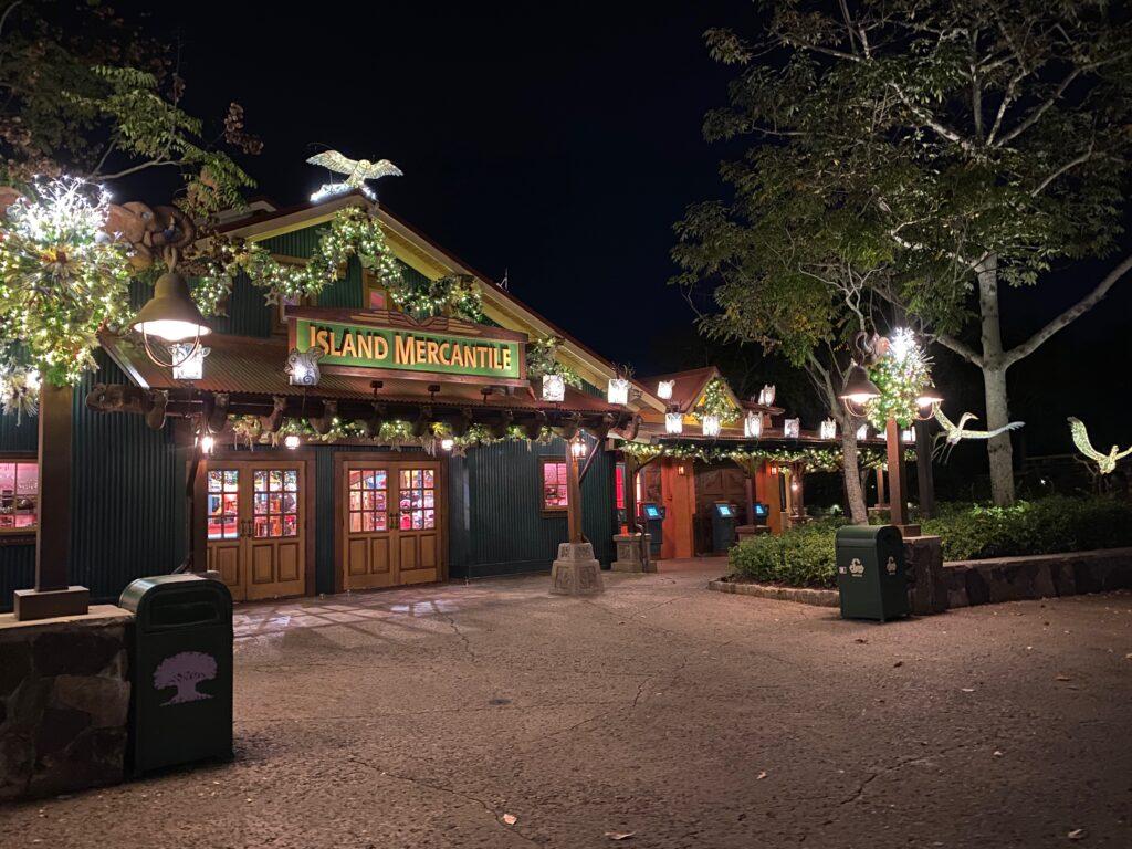 animal kingdom holiday decor at night