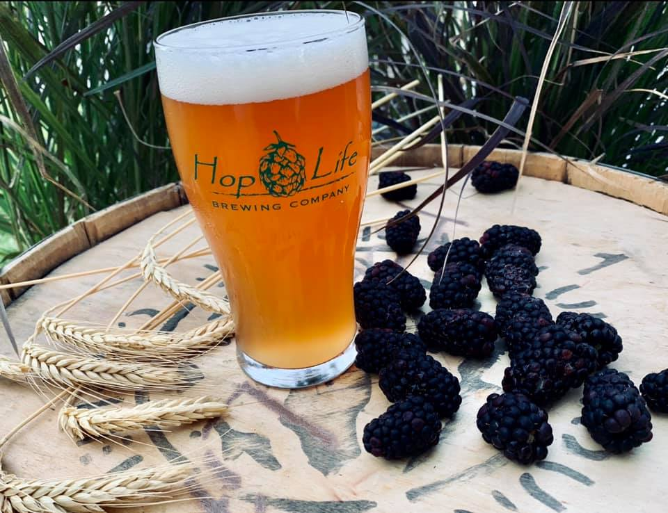 Hop Life Brewing Blackberry Ale