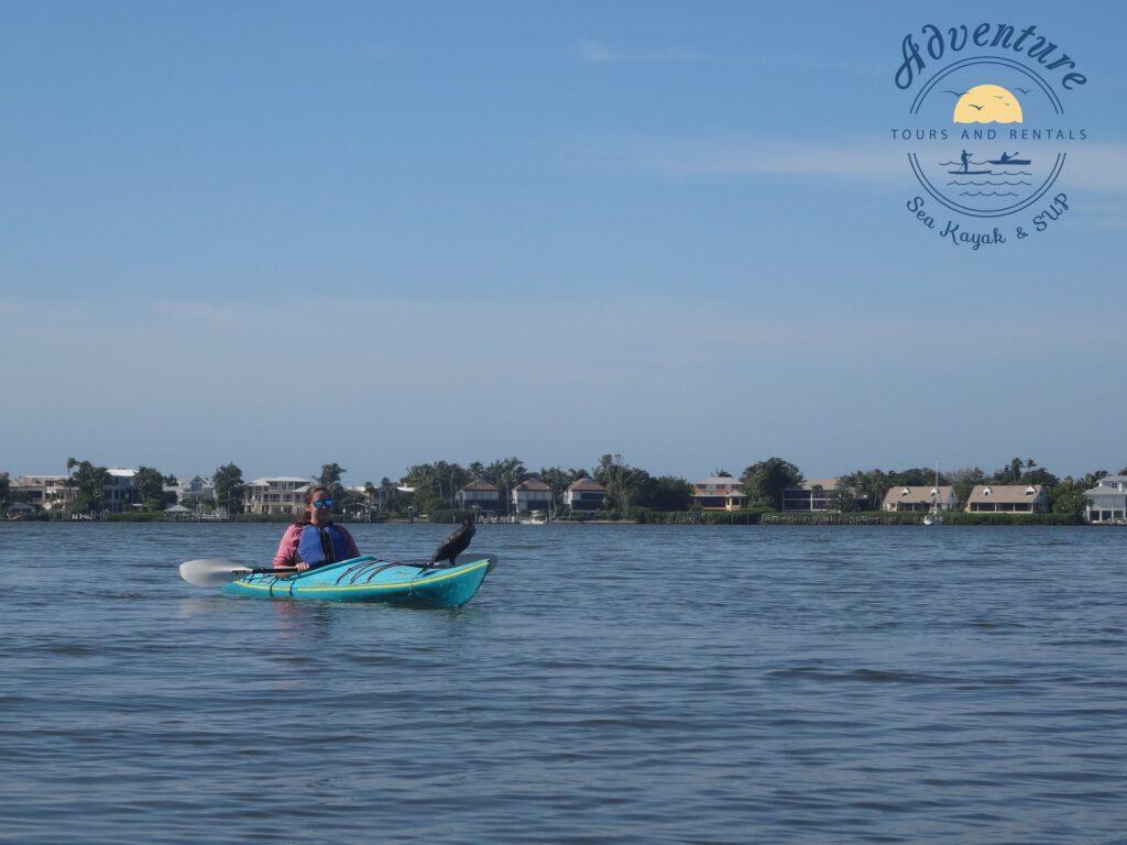 Adventure Sea Kayak & SUP