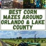 Fall Fun Around Lake County Florida