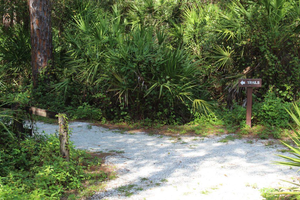 Calusa Nature Center Trails