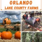 Fall Fun around Lake County