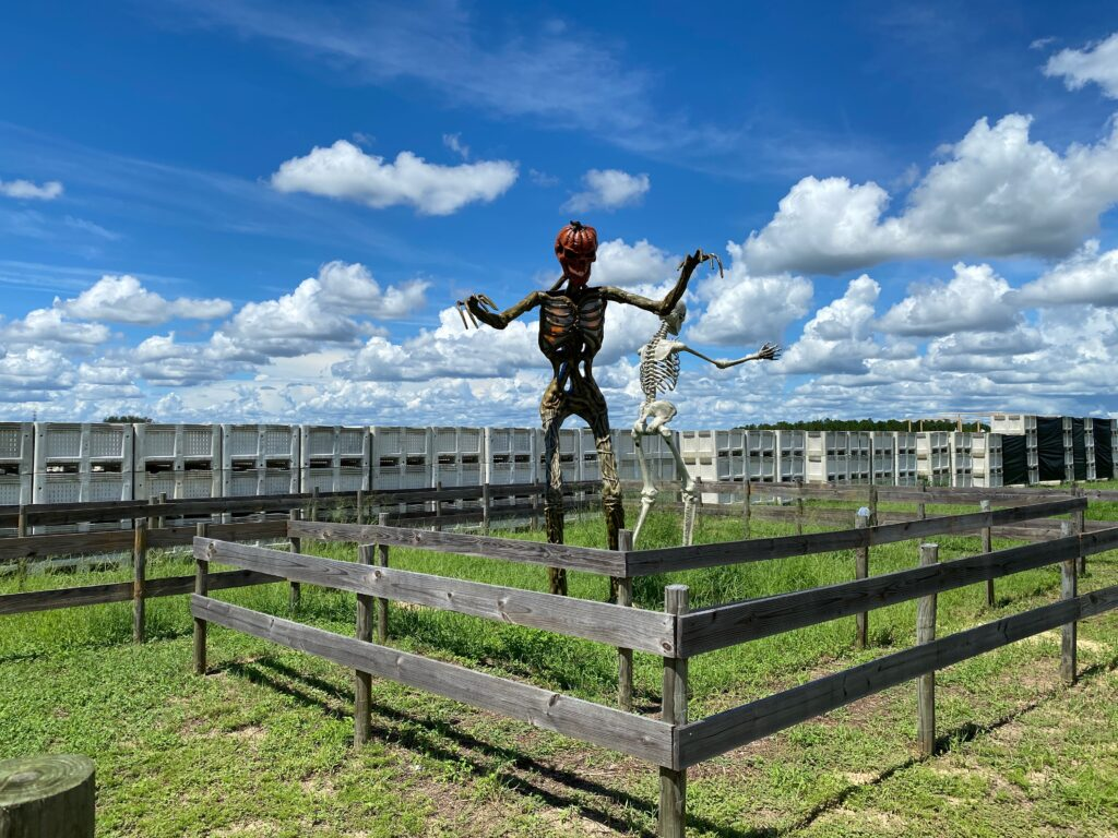 Haunted Trail at Sunsational Farms