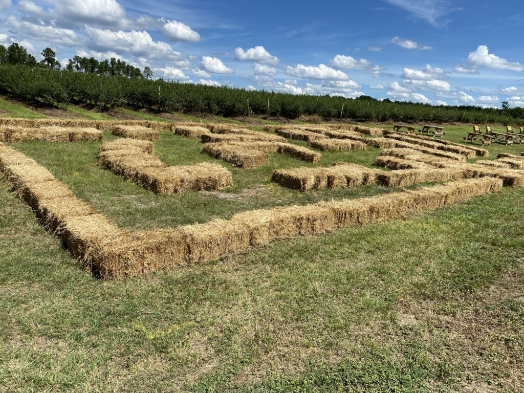 Hay bale maze at Atwood Farms in lake county