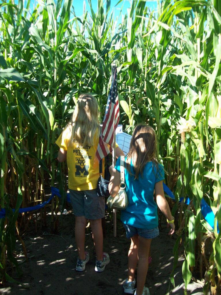 Inside corn maze at Long & Scott Farm