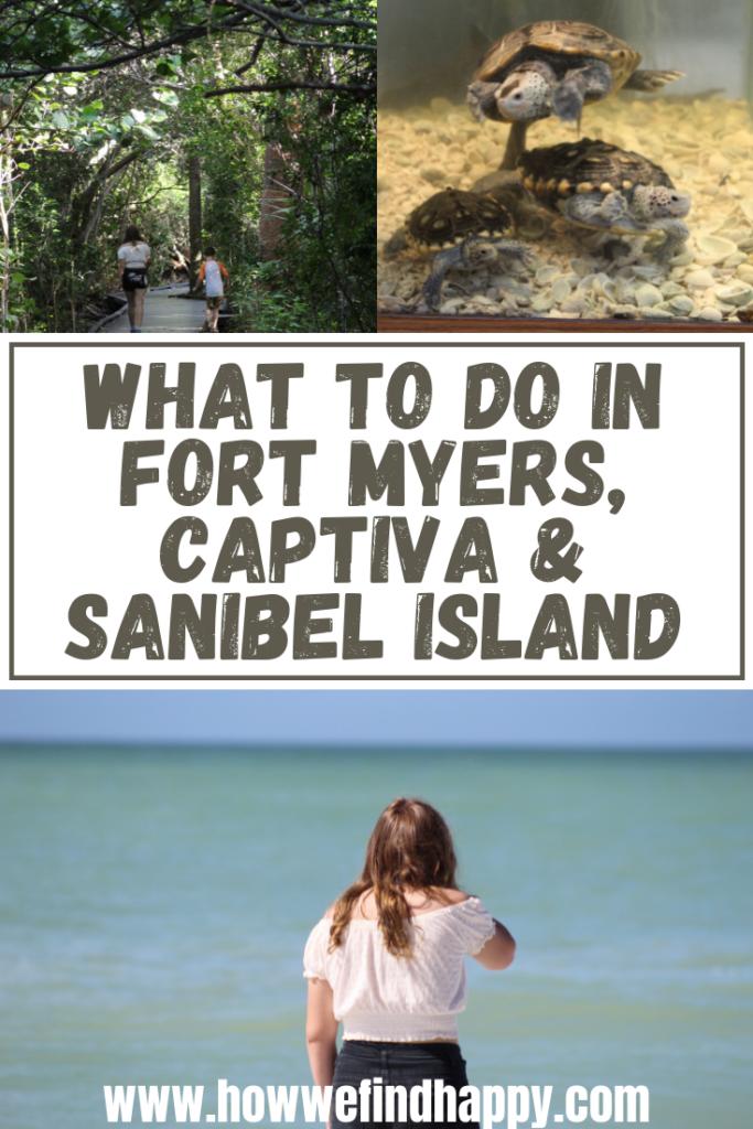 Southwest Florida Beaches and Wildlife