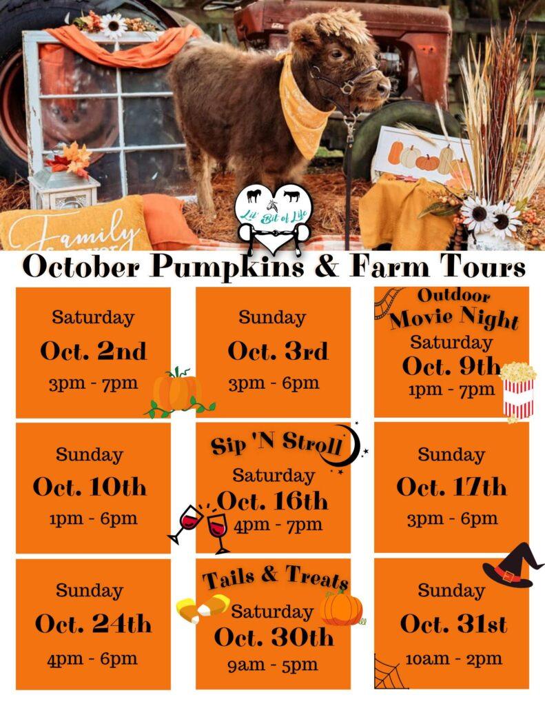 Lil' Bit of Life Farm Events