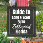 Guide to Long and Scott Farms in Central Florida