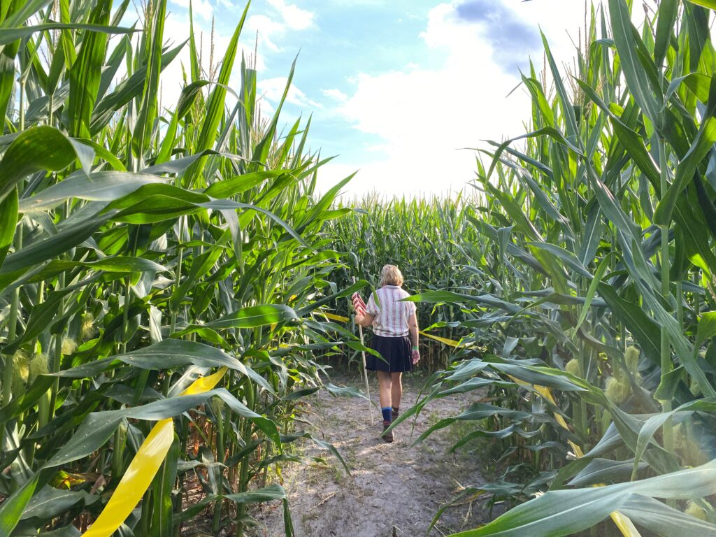 Walking through corn maze at Long and Scott Farms